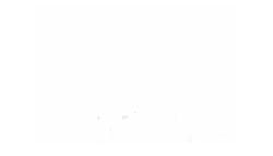 IVS Blog Logo