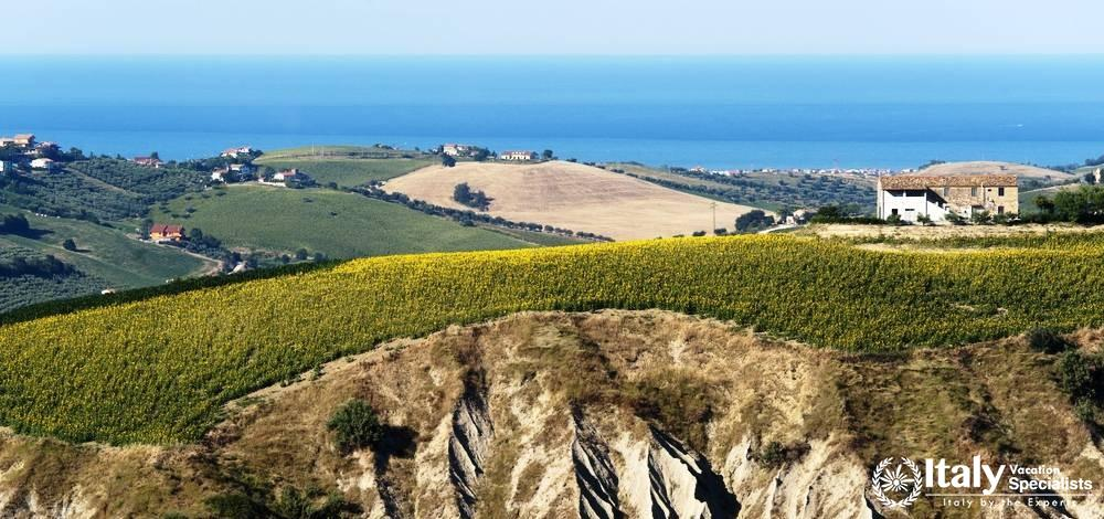 Le Marche - Driver in Marche - Food and Wine Tours Marche Region, Italy