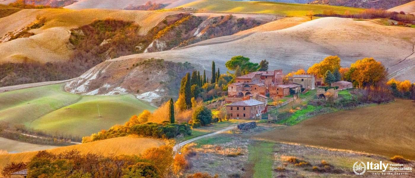 Harvest Time in Tuscany