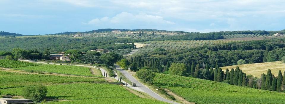 Countryside near Siena