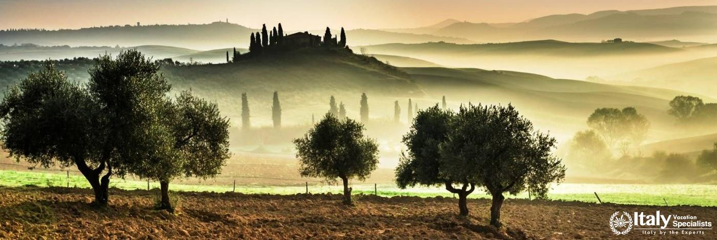 Cooking Among the Olive Trees in the Spectacular Southern Tuscany