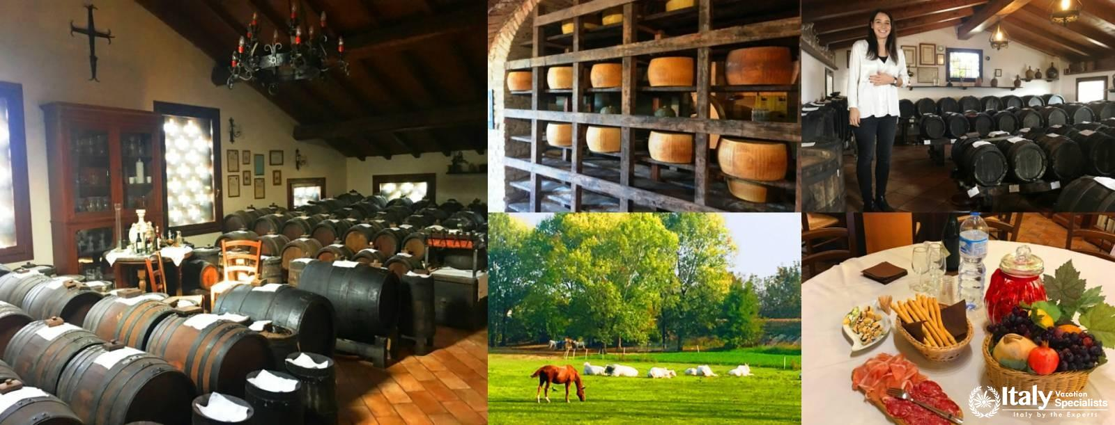 A Day in Emilia Romagna with Local Tastings and Cooking Course