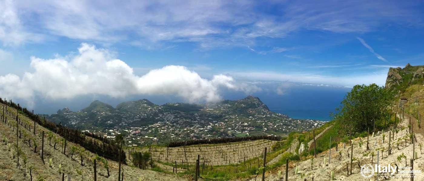 Amalfi Coast Campania Italy Wine Tour