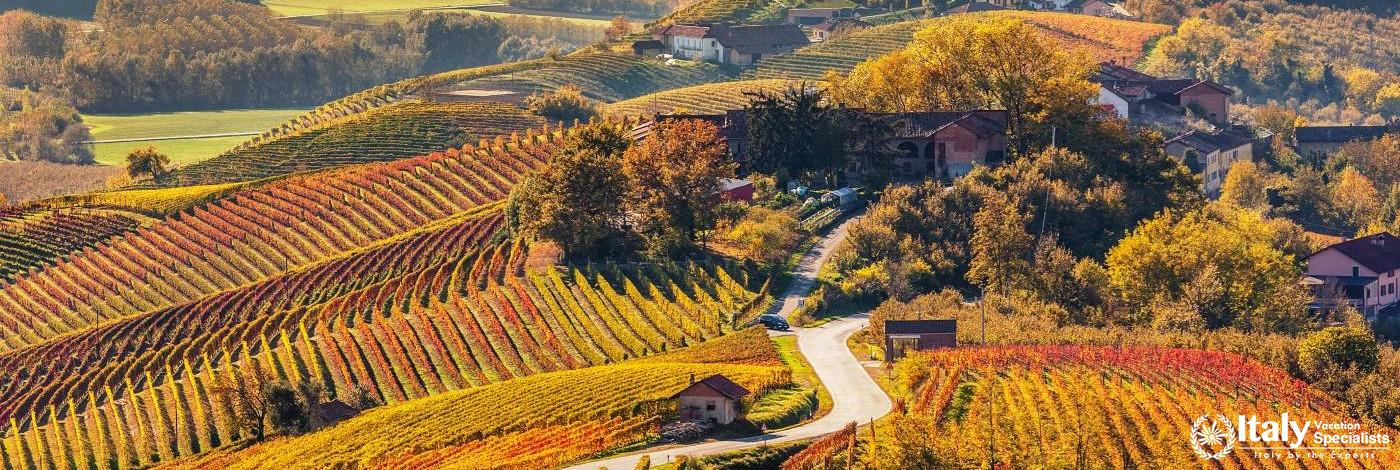 Beautiful Wine Roads of Canavese