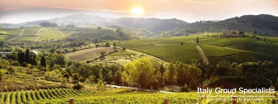 Vineyards as Seen from Castellina in Chianti